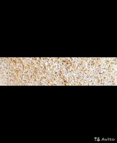 Продам: Рисовая шелуха
