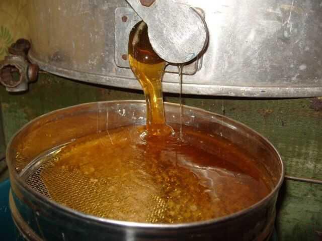 Продам: Мёд горный с дягелем и разнотравье с гре
