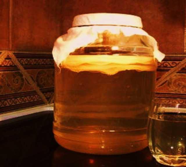 Продам: Чайный гриб - антисептик и витамины