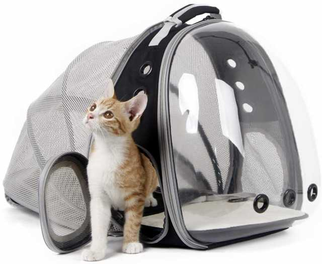 Продам: Раздвижной рюкзак для кошки или собаки