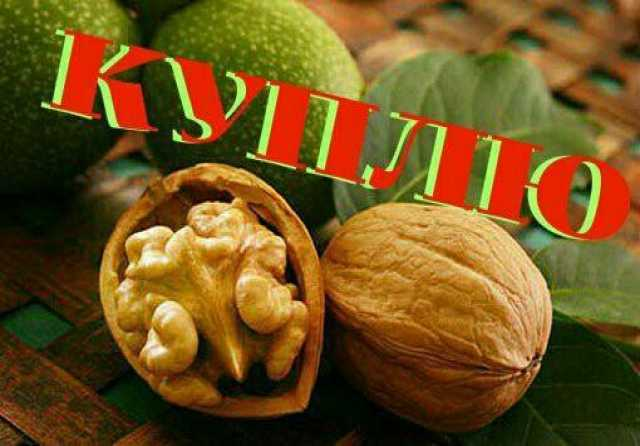 Куплю: Грецкий орех 2020 года