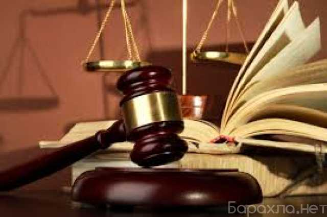 Предложение: Консультация студентов по юриспруденции