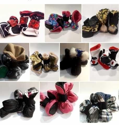 Продам: Обувь для собак