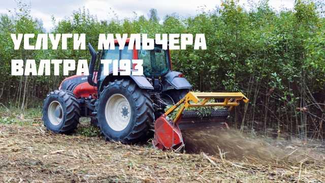 Предложение: Корчевание пней, деревьев, лесополос, са