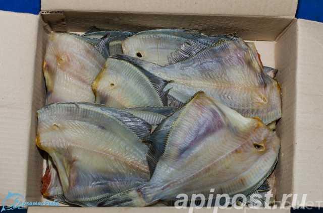 Продам: Рыба