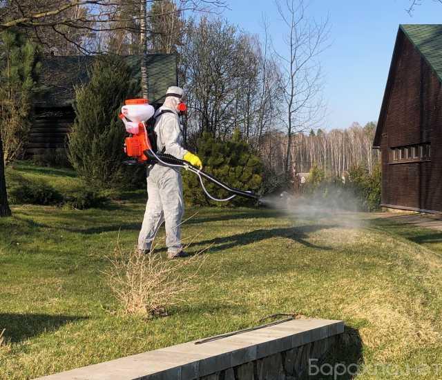 Предложение: Обработать от клещей и комаров служба