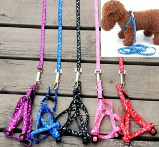 Продам: Шлейки для собак и кошек новые
