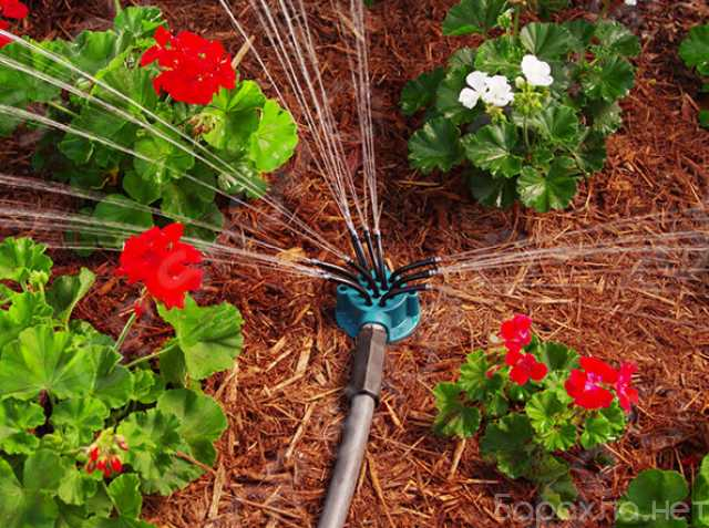 Продам: Fresh Garden - умная система полива 12