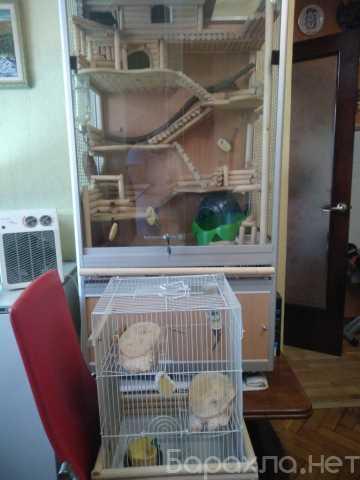Продам: Клетки для грызунов