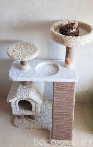 Продам: Домик для кошки, когтеточка, комплекс