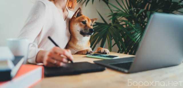 Вакансия: Онлайн-менеджер в интернет-магазин