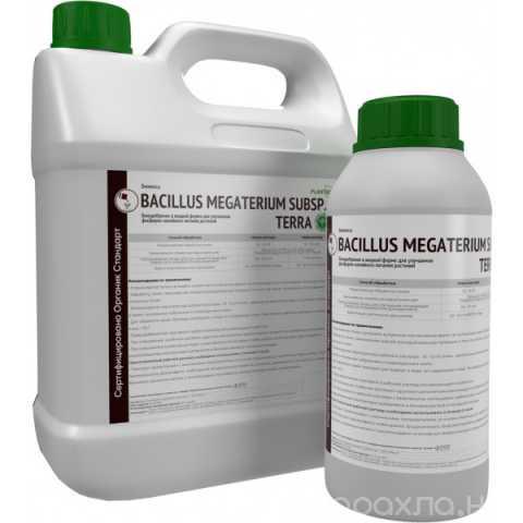 Продам: Bacillus megaterium Organic