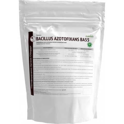 Продам: Биомасса Bacillus azotofixans BA55
