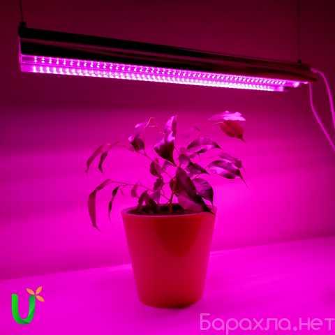 Продам: Светильник для растений фитолампа LED