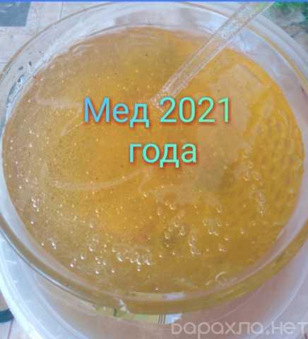 Продам: Мед натуральный 2021 года