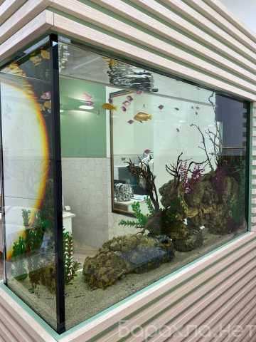 Продам: Аквариум на 500л с рыбками без тумбы